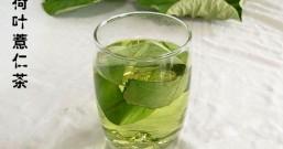 痘痘冒不停、脸上油腻腻,湿热体质就像体内做桑拿,多喝荷叶薏仁茶祛湿除热